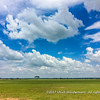 Plains in the Serengeti National Park, Tanzania