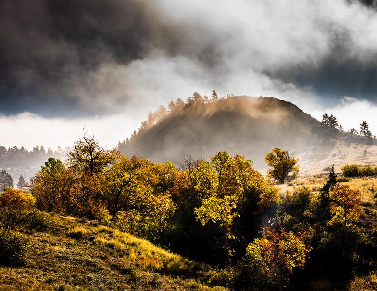 Fall - Fog