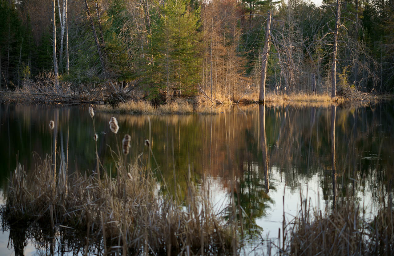 IMAGE: https://photos.smugmug.com/Eastern-Ontario-2007-/Scenery-near-my-home/i-KfDm3h2/0/8783bfc8/X2/DSC00124-X2.jpg