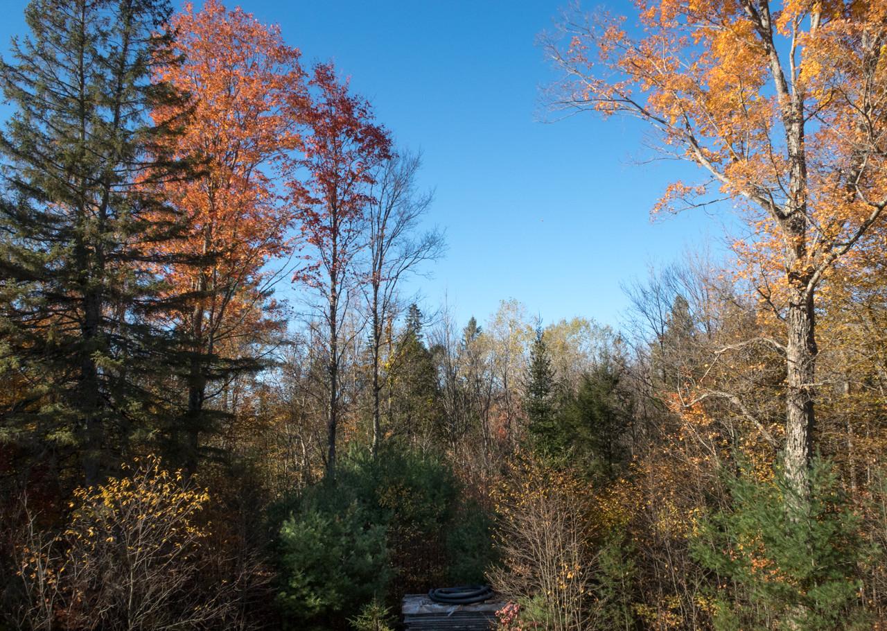 IMAGE: https://photos.smugmug.com/Eastern-Ontario-2007-/Scenery-near-my-home/i-x7zcnZX/0/17c3eb34/X2/IMG_5757-X2.jpg