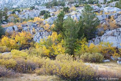 Rock Creek, Little Lakes Basin