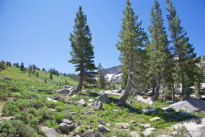 On the trail up to Winnemucca Lake
