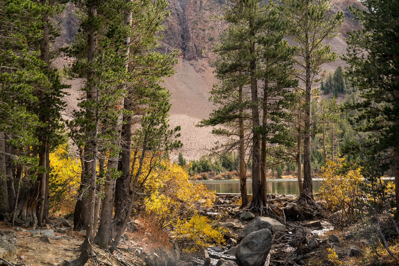 Virginia Lakes, Late Afternoon in Fall