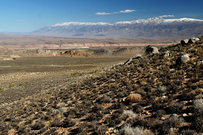White Mountains, Owens Valley, California
