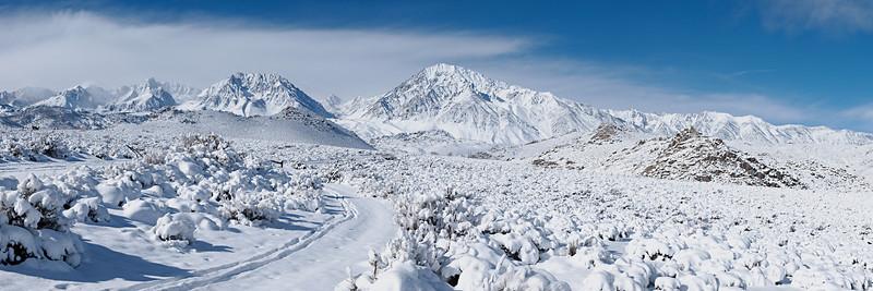 Ski Tracks<br /> <br /> Mount Humphreys, Basin Mountain, Mount Tom and Wheeler Crest