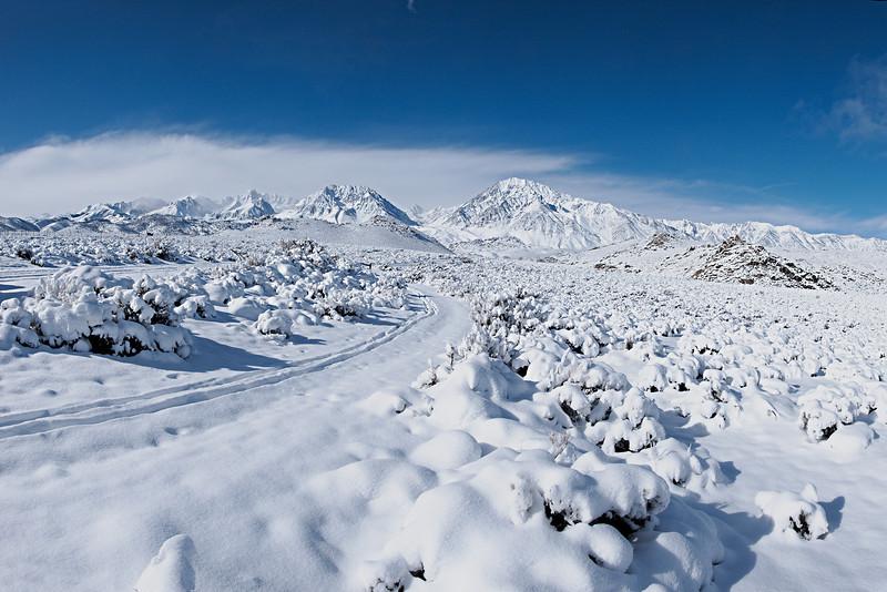 Ski Tracks in the Buttermilks<br /> <br /> Mount Humphreys, Basin Mountain, Mount Tom and Wheeler Crest