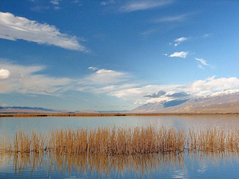 Klondike Lake, White Mountain Reflections 2