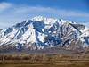 Mount Tom above Round Valley
