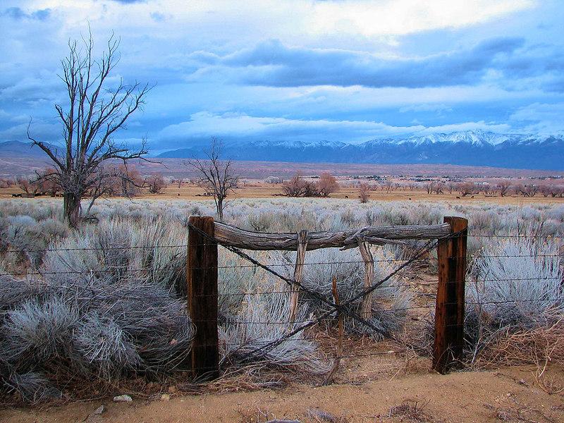 Round Valley, White Mountains Storm 3
