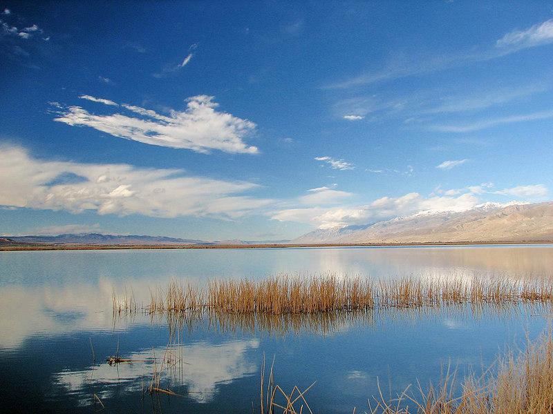 Klondike Lake, White Mountain Reflections 1