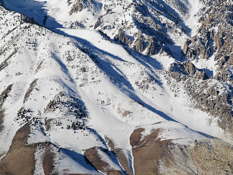 Mount Tom: Elderberry Canyon lower moraine