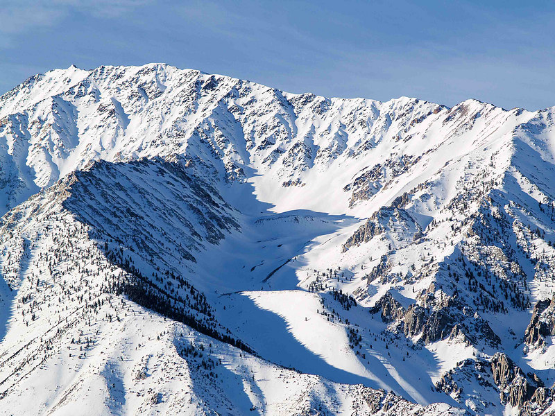 Mount Tom: North Ridge and Elderberry Canyon