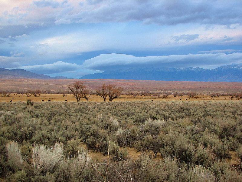 Round Valley, White Mountains Storm 2