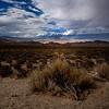 Owens Valley Near Bishop