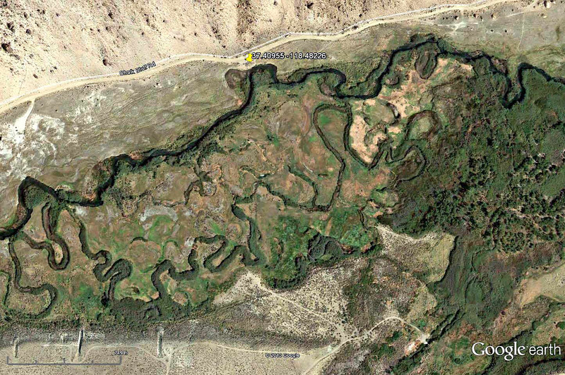 Lower Owens-Bishop Special Regs Waters<br /> 05-River_Willows_by_road<br /> 37.40955 -118.48226<br /> Aerial View