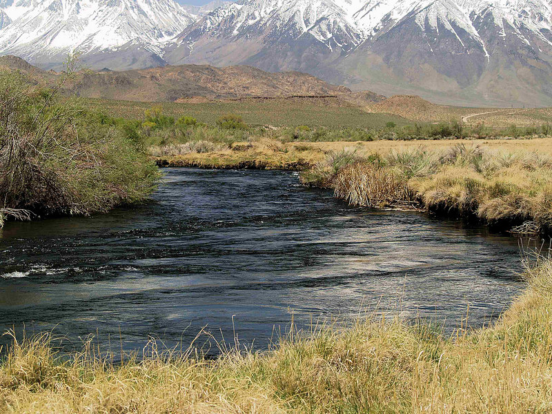 Lower Owens River<br /> Special Regulations Waters<br /> Bishop, Pleasant Valley<br /> May 2, 2006
