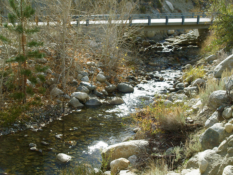 Lower Big Pine Creek<br /> November 12, 2006<br /> A pullout at this second bridge above town provides easy access to this section of the lower creek. During the summer the recovering vegetation is beginning to provide the shade and shelter typical of brushy eastern Sierra high gradiet streams.
