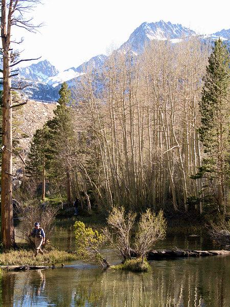 Bishop Creek just below South Lake