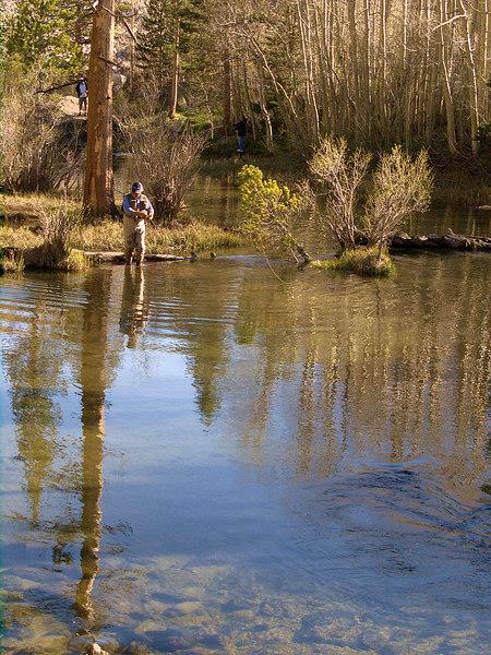 Bishop Creek just below South Lake Dam