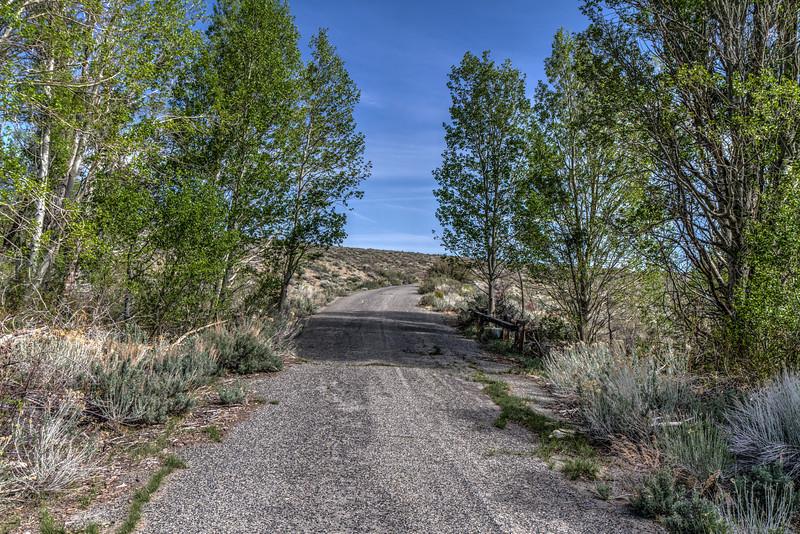 059 Old Highway 395 in the Eastern Sierra