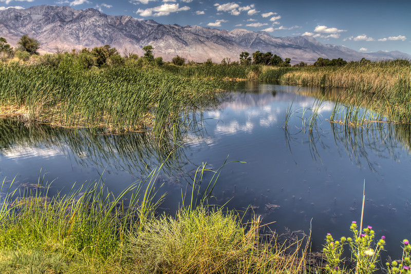 024 Billy Lake, Owens Valley