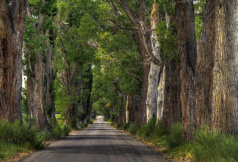 036 Birchim Lane, Round Valley