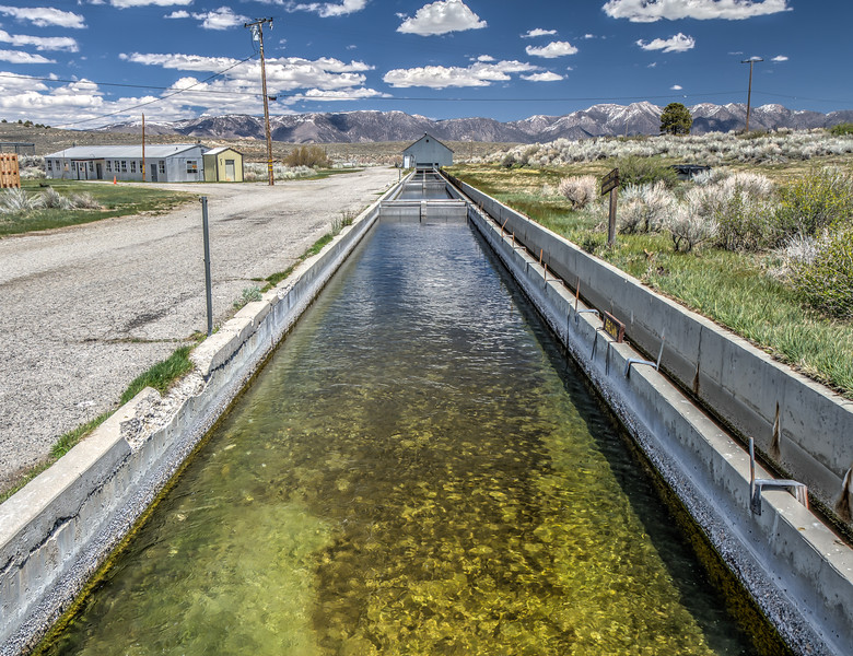 073 Hot Creek Trout Hatchery, Mono County, California