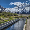 074 Hot Creek Trout Hatchery, Mono County, California