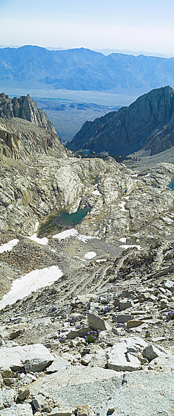 """The Switchbacks, Trail Camp, Thor, the Inyo Mountains, The Switchbacks above Trail Camp 2006-07-16  <a href=""""http://www.dbdimages.com/photos/82879478_eLjdV-O.jpg""""TARGET=""""blank"""">View large in another window.</a> Use your viewer's zoom function if necessary and be sure to use the sliders."""