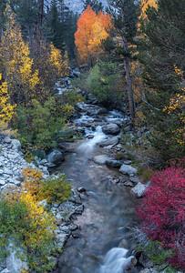 Bishop Creek Palette