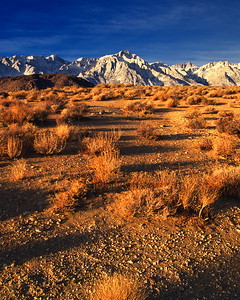 Morning, Sierra Nevada Alabama Hills California
