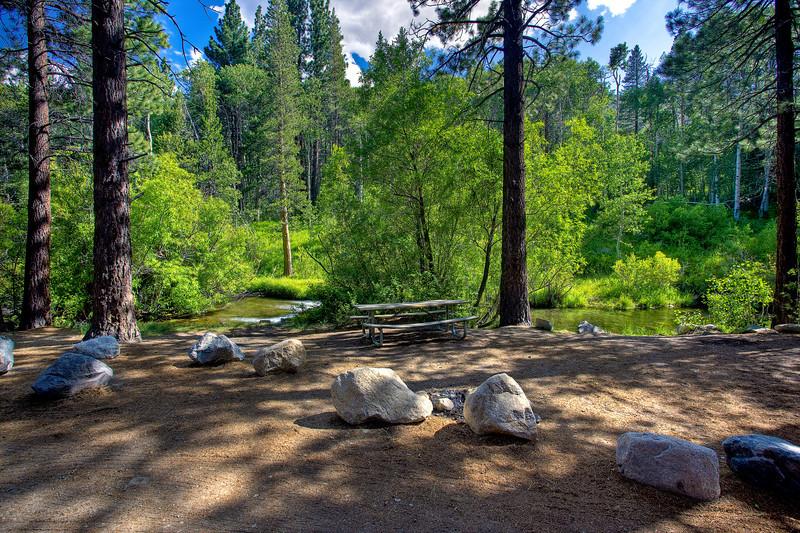 """""""Eastern Sierra Picnic Spot"""""""