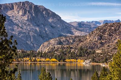 Fall Colors, June Lake