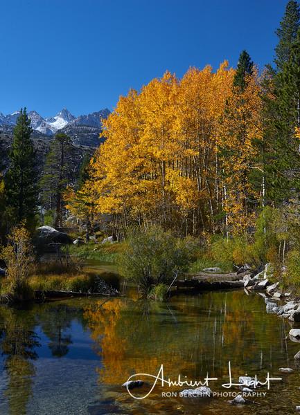 Sierra Color