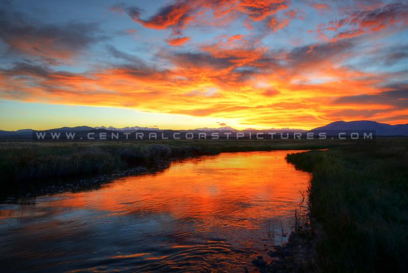 upper-owens-river-mammoth_9494