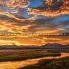 mammoth-owens-creek_9448