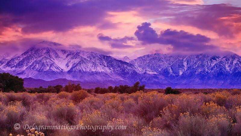 20111006_Eastern Sierras_1599