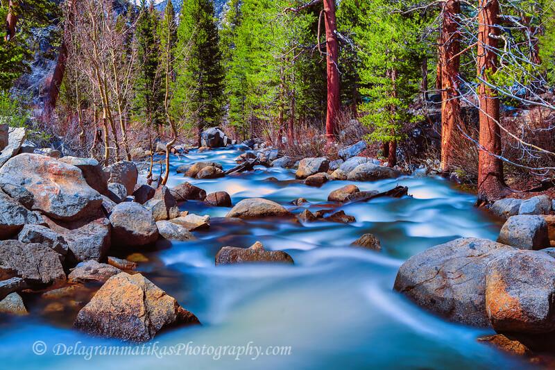 20110611_Eastern Sierras_0565