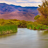 20110612_Eastern Sierras_0712