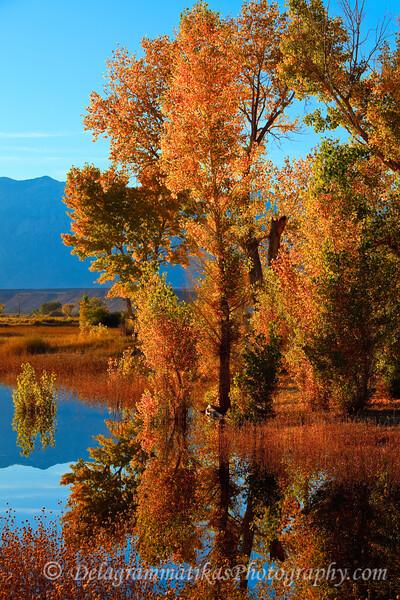 20111022_Eastern Sierras_2911