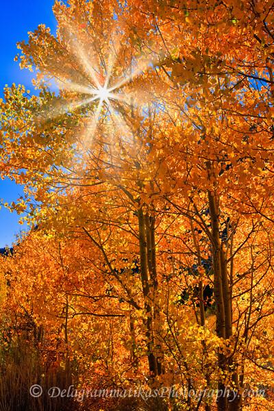 20111023_Eastern Sierras_2994