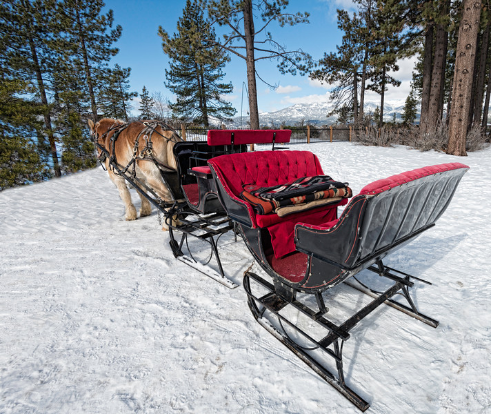 Sleigh ride at Sand Harbor
