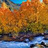 20111022_Eastern Sierras_2879
