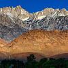 20100425_Eastern Sierras_0687