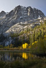 Silver Lake beam of sunrise onto quakies