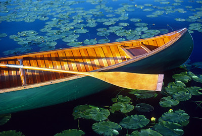 Wood Canoe and Lily Pads