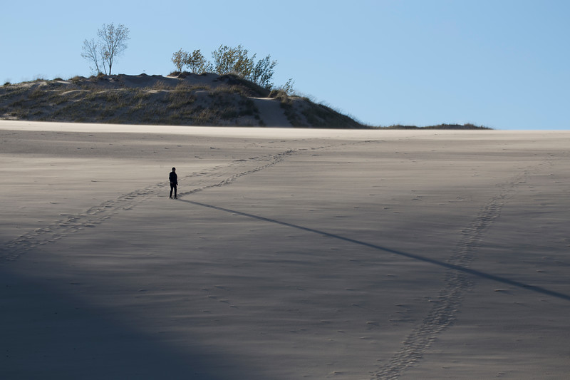 Long Shadow on the Sand Dune