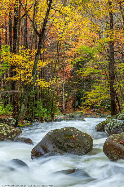 Fall Colors along Roaring Forks Motor Trail