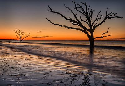 Low Tide at Botany Bay