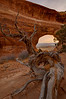 Partition Arch - HDR Image - Arches National Park - Mark Gromko - January 2012